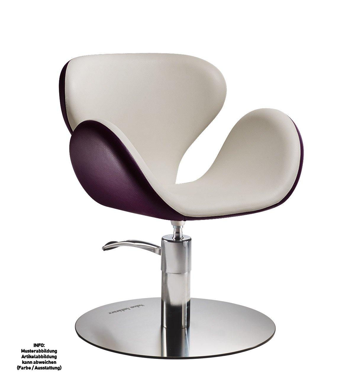 Möbel Salon Möbel Friseur Stuhl. Liefern Gehobenen Friseurstuhl